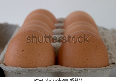 A carton of brown eggs, viewed from one end, close-up, shallow depth of field. - stock photo