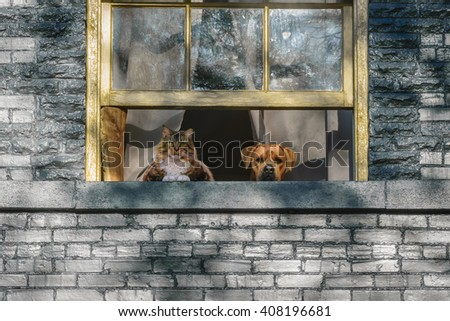 A cat and a dog looking out a window set in a brick wall. - stock photo