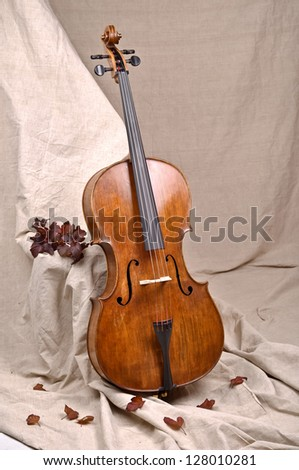 A cello in beige background - stock photo