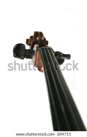 A cello scroll and finger board isolated on white - stock photo