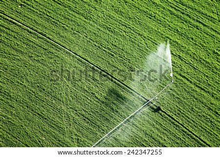 A center pivot used to irrigate an alfalfa field. - stock photo