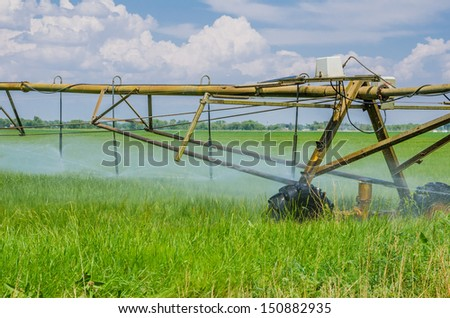A Centre Pivot Irrigation System in a Wheat Field - stock photo