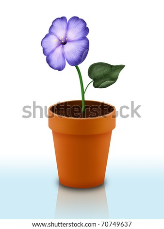 A ceramic flower pot isolated on white background