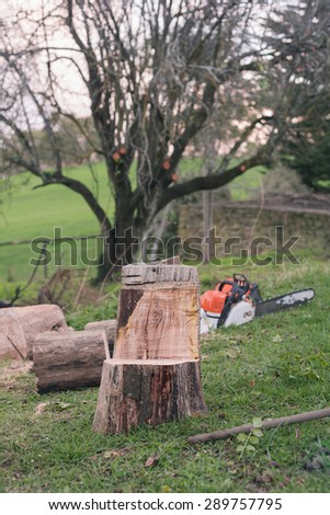 a chainsaw on the ground, with cut tree in the background - stock photo