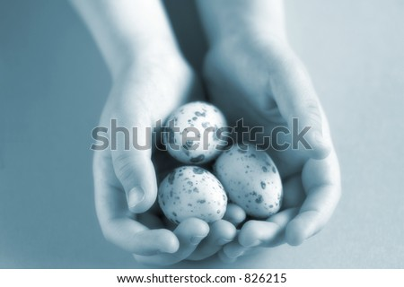 A child gently cups baby bird's eggs in its hands. A symbol of youth, innocence, birth, & purity.