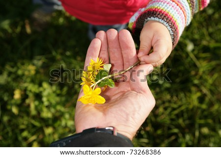 A child give its a parent a spring flower - stock photo