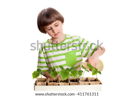 A child watering cucumber seedlings - stock photo