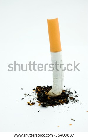A cigarette butt on white - stock photo