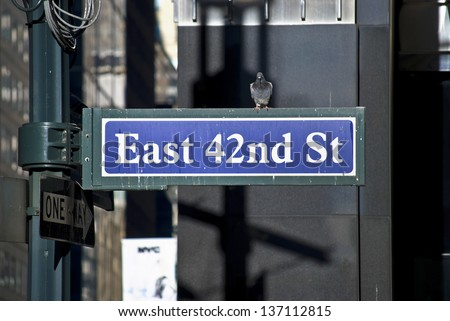 A classic New York City street sign with a pigeon sitting on it.