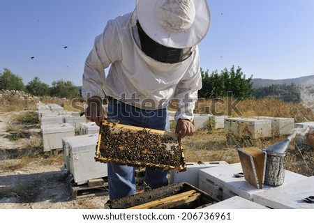 A close-up image of bee keeper at Crete, Greece - stock photo