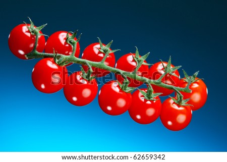 A close up of a cluster of cherry tomatoes on a blue lit background. - stock photo