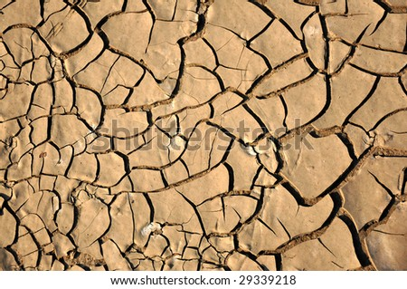 a close up of a dirt ground, dry land, texture, background.