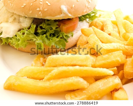 A close-up of a savoury beef burger with salty french fries on a plate - stock photo