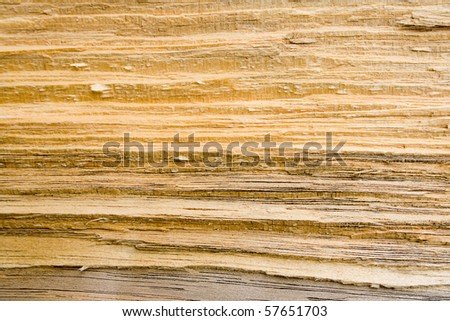 A close up of a wood grain texture pattern on split pine timber. - stock photo