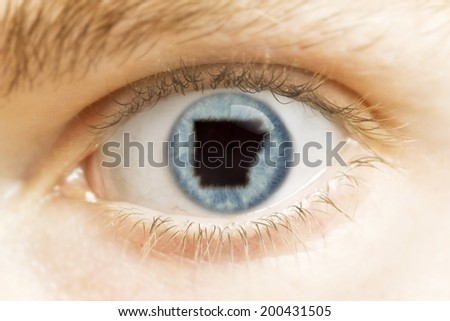 A close-up of an eye with the pupil in the shape of Arkansas.(series)