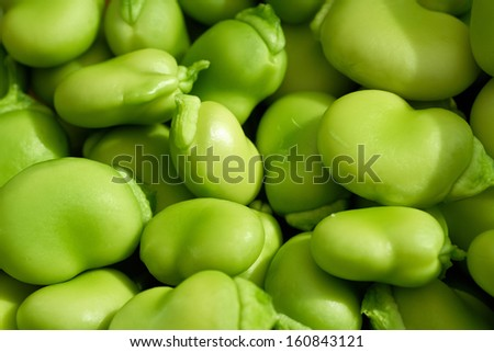 A close up of fresh green broad beans. - stock photo