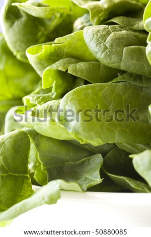 A close up of raw spinach leaves.