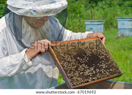 A close up of the beekeeper with honeycomb in his hands.
