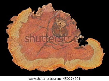 A close up of the cut of an pear-tree. Isolated on black. - stock photo