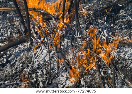 A close up of the flame of brushfire. - stock photo