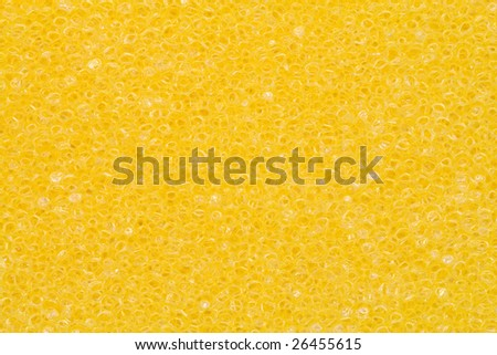 A close-up of the texture of a yellow sponge