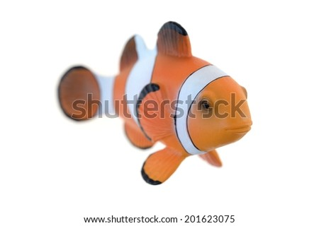 A close up shot of a Clown Fish - stock photo