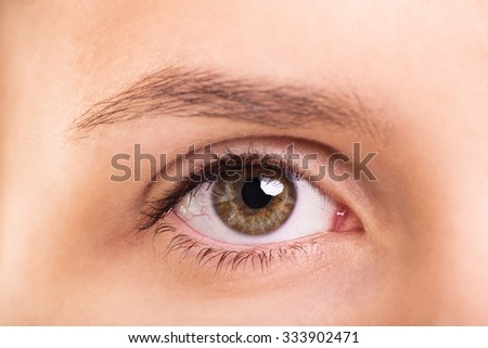 A close up shot of a female eye and eyebrow - stock photo
