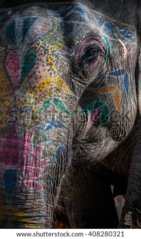 painted elephant india stock images royaltyfree images