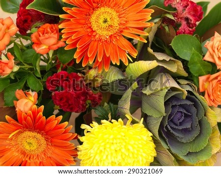 A close up shot of flowers in a gift box - stock photo