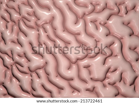 A close-up texture of regular human brain tissue   - stock photo