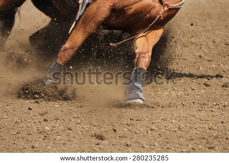 A close up view of a horse running in dirt. - stock photo