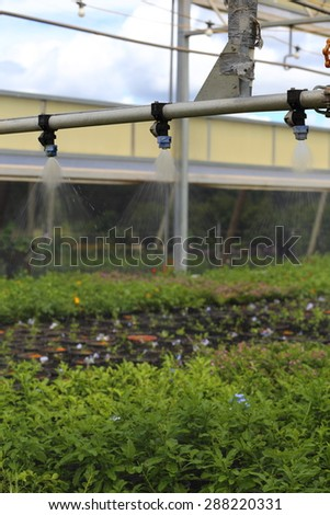 A close up view of a watering boom inside a greenhouse.  - stock photo