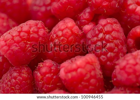 A close up view of fresh organic raspberries - stock photo