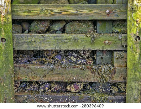 A close view of the pier rock wall at low tide. - stock photo