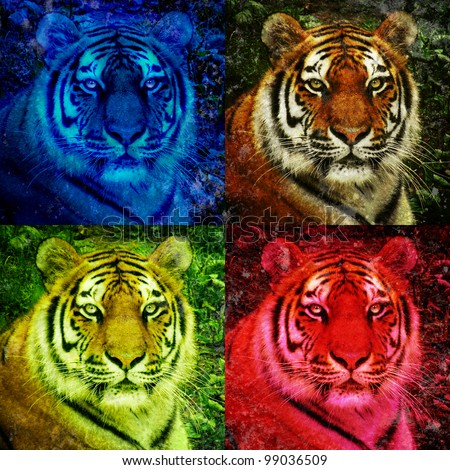 A closeup of a lion staring with open eyes. There are four colorful versions. There are bright neon blue and red colors. Use it for a pop art strength concept. - stock photo