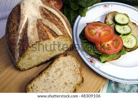 a closeup of fresh vegetables for a healthy sandwich.  Focus is on the tomatoes.