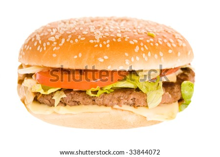 a closeup photo of a tasty sandwich on a white background