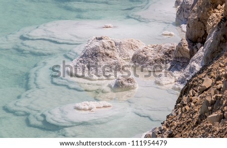 A closeup portrait of crystals on the shore of the Dead sea - Israel - stock photo