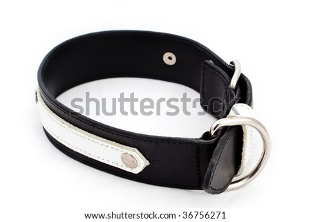 A closeup studio shot of a black and white leather dog collar. - stock photo