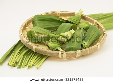 A closeup view focusing on the in knot pandan leaves leaving the long leaves underneath the bamboo plate blur as background on white. The long leaf is tied up in knot for easy removing after cooking. - stock photo