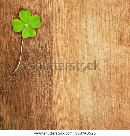 a clover on wooden desk - stock photo