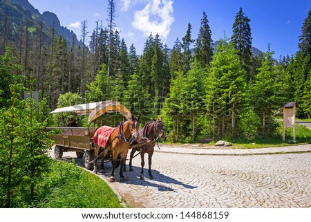 A coach with horses in Tatra National Park, Poland - stock photo