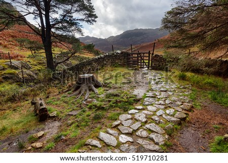 A cobbled, stone walkway in a wooded area of the Lake District near Elterwater, England.