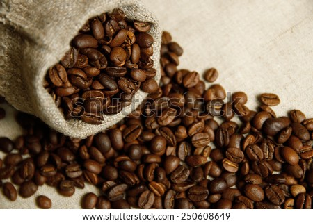 a coffee beans in the bag - stock photo
