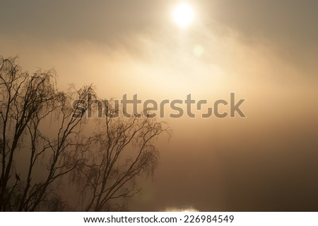 A cold early morning sun. - stock photo