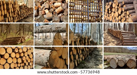A collage of different types of wood piles, save of natural environment concept - stock photo