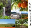 A collage of diverse nature images from different areas of Costa Rica. - stock photo