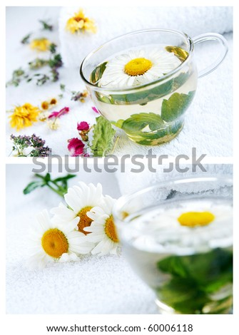A collage of images of herbal and camomile-mint warm tea, arrnged by dried herbs and flowers using as alternative treatments in folk medicine, closeup, blur background - stock photo