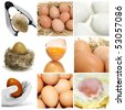 a collage of nine pictures of different eggs - stock photo