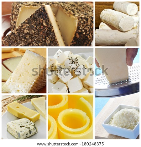 a collage of pictures of different kind of cheese - stock photo